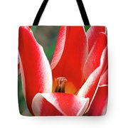 Bloom Of The Tulip Tote Bag