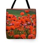 Bloom Red Poppy Field Tote Bag