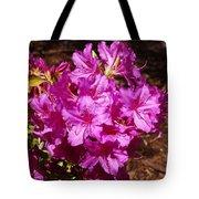 Blooming Azaleas Tote Bag