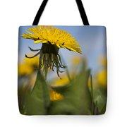 Blooming Dandelion Flower Tote Bag