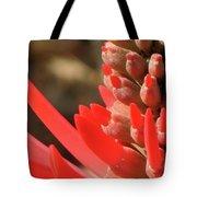 Blooming Fire Spike Tote Bag