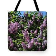 Blooming Lilacs Tote Bag