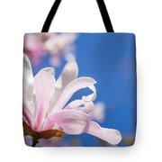 Blooming Magnolia Flower Tote Bag