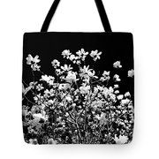 Blooming Magnolia Tree Tote Bag