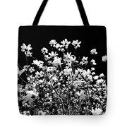 Blooming Magnolia Tree Tote Bag