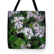 Blooming Money Tree Tote Bag