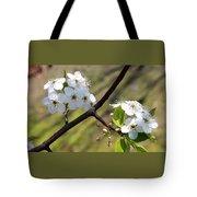 Blooming Pear Tree Tote Bag
