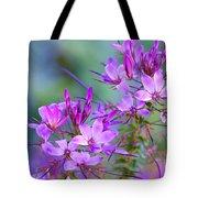 Blooming Phlox Tote Bag