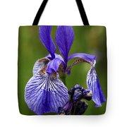 Blooming Purple Iris Tote Bag