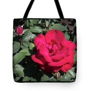 Blooming Rose With New Rose In Garden Tote Bag