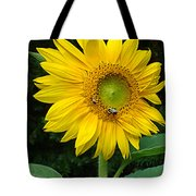 Blooming Sunflower Closeup Tote Bag
