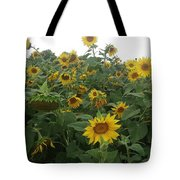 Blooming Sunflowers Tote Bag