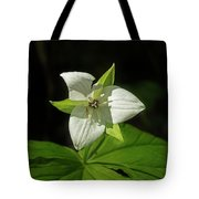 Blooming Trillium Tote Bag