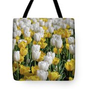 Blooming Tulips As Far As The Eye Can See Tote Bag