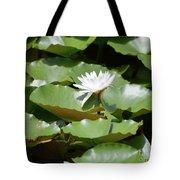 Blooming Waterlily  Tote Bag