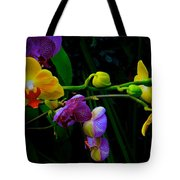 Blooms To Come Tote Bag
