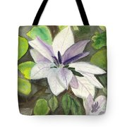 Blossom At Sundy House Tote Bag