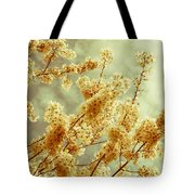 Sakura - Tinted Tote Bag