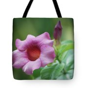 Blossom Of Allamanda Tote Bag