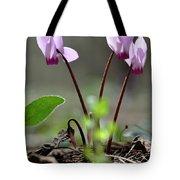 Blossom Of Cyclamens Tote Bag
