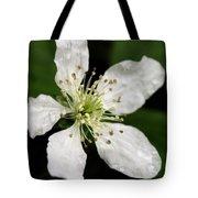 Blossom Square Tote Bag