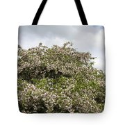 Blossoming Tree Tote Bag