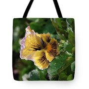 Blossoms And Waterdrops  Tote Bag