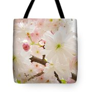 Blossoms Art Print 53 Sunlit Pink Tree Blossoms Macro Springtime Blue Sky  Tote Bag