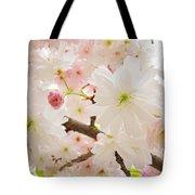 Blossoms Art Print 53 Sunlit Pink Tree Blossoms Macro Springtime Blue Sky  Tote Bag