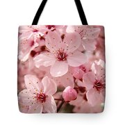 Blossoms Art Prints 63 Pink Blossoms Spring Tree Blossoms Tote Bag