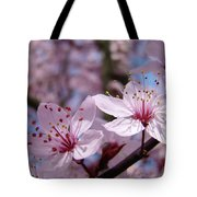 Blossoms Art Prints Pink Spring Tree Blossoms Canvas Baslee Troutman Tote Bag