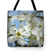 Blossoms Art Prints Whtie Spring Tree Blossoms Blue Sky Baslee Tote Bag