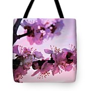 Blossoms At Sunset Tote Bag