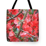 Blossoms Branches And Thorns Tote Bag