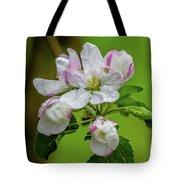 Blossoms In The Rain Tote Bag