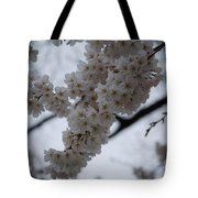 Blossoms Of Dc Tote Bag
