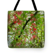 Blossoms Of Spring Time Tote Bag