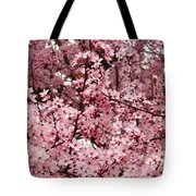 Blossoms Pink Tree Blossoms Giclee Prints Baslee Troutman Tote Bag