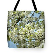 Blossoms Whtie Tree Blossoms 29 Nature Art Prints Spring Art Tote Bag