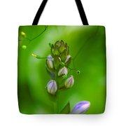 Blossom Dream Tote Bag