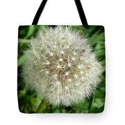 Blowball 1 Tote Bag