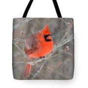 Blowing Snow Cardinal Tote Bag