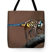 Blue And Gold Dragonfly Tote Bag