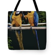 Blue And Gold Macaw 1 Tote Bag