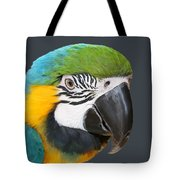 Blue And Gold Macaw Digital Freehand Painting Tote Bag