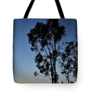 Blue And Gold Sunset Tree Silhouette I Tote Bag