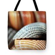 Blue And Orange Seashells Tote Bag
