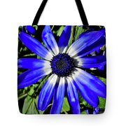 Blue And White African Daisy Tote Bag