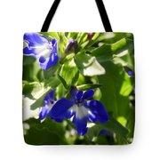 Blue And White Lobelia Tote Bag