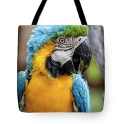 Blue And Yellow Macaw Vertical Tote Bag